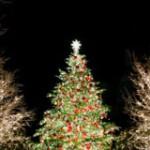 クリスマスデートを成功させるために事前に知っておきたい事5つ